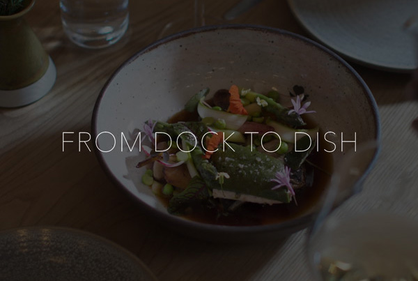 Canon: From Dock to Dish